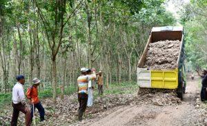 Iyes! Paslon Bersinar Bantu Perbaiki Jalan Penghubung di Bogorejo
