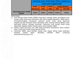 Nah, Ini Besaran Suku Bunga Dasar Kredit Bank Lampung Periode 30 Juni 2021
