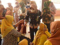 Ketua Dekranasda Lamteng Sulam Jalin Kepang di Padang Ratu